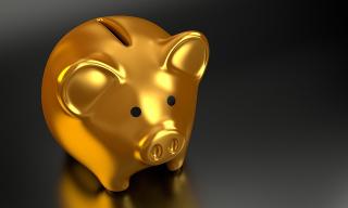 Piggy-2889046_640